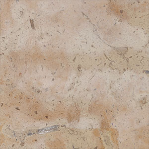 Ginseng Cream Limestone - Honed