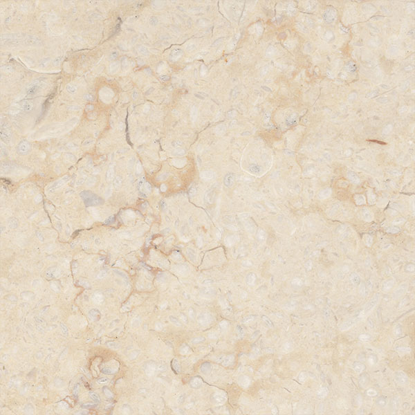 Golden Beige Marble - Honed
