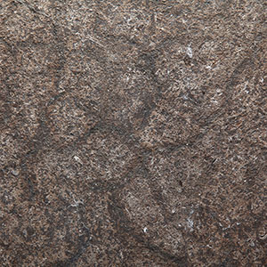 Grand Tortoise Limestone - Thermal