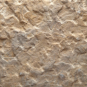Kinaro Tan Limestone - Pineapple