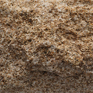 Pepper Brown Granite - Mushroom