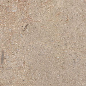 Rum Beige Limestone - Honed