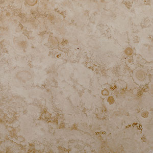 Turkish White Travertine - Honed and Filled